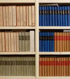 Bücher nebeneinander  Pflege und Aufbewahrung - ZVAB.com